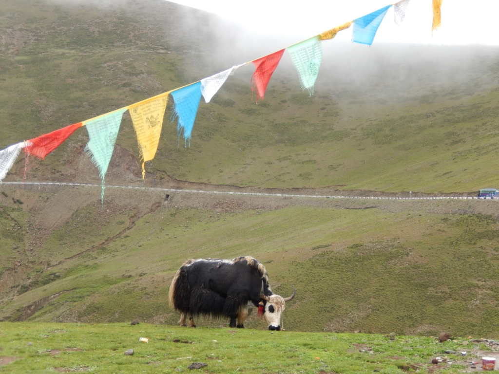 Roadtrip – Lhasa to Kathmandu: 4 days and 3 nights